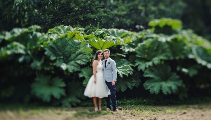Summer Wedding at Ballyvolane House   A+G   Wedding Photography